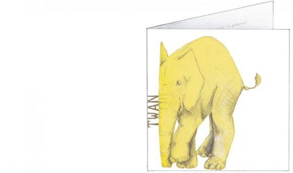gele olifanten   voorkant