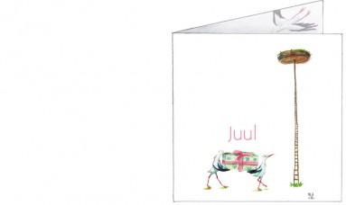 Voorkant   Juul   ooievaars met een speicaal pakketje