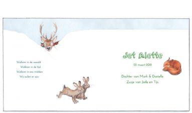 binnenkant | Jet | hert, konijn, fazant