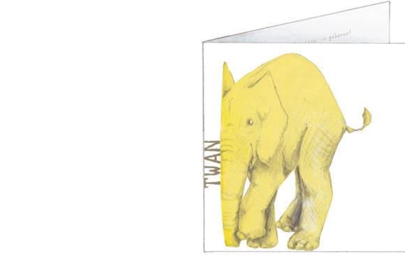 gele olifanten | voorkant