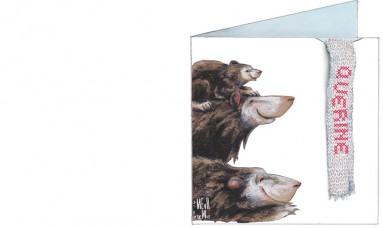 Voorkant | Querine | beren