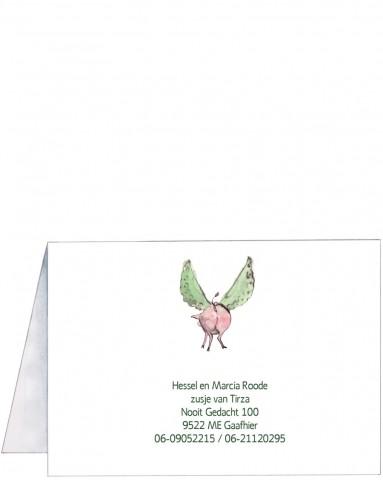 Achterkant | Yael | vliegend varken