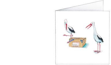 Ooievaars met bijzonder pakketje| voorkant
