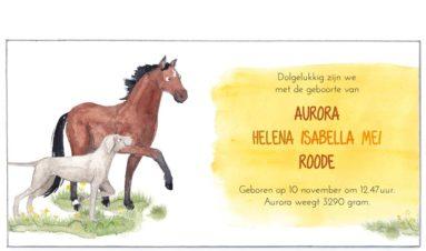 Binnenkant | Aurora | hond en paarden