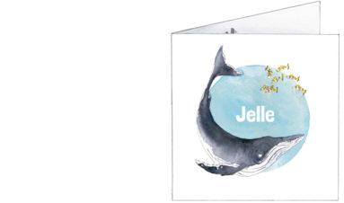 voorkant | Jelle | walvis en tropische visjes